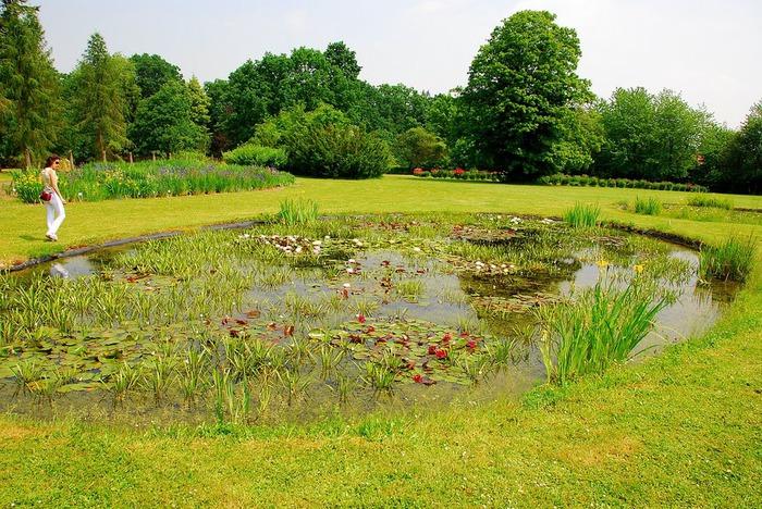 Ботанический сад в Пругонице 84583