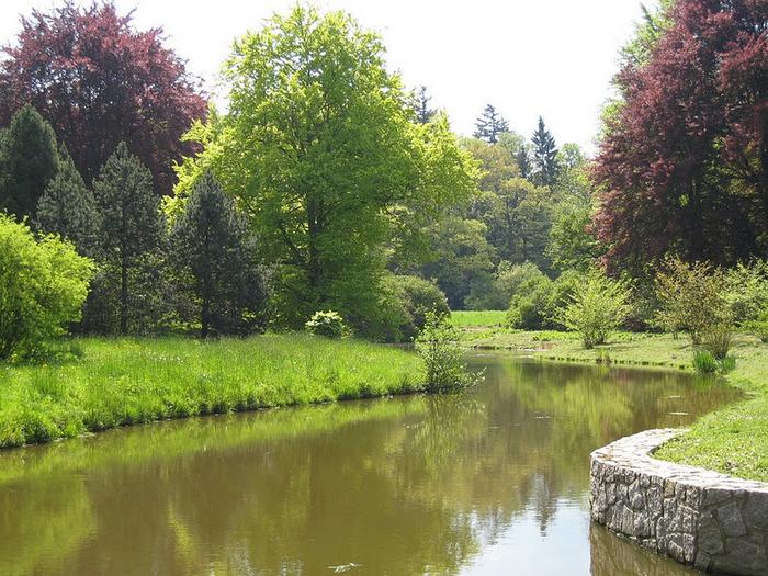 Ботанический сад в Пругонице 46165