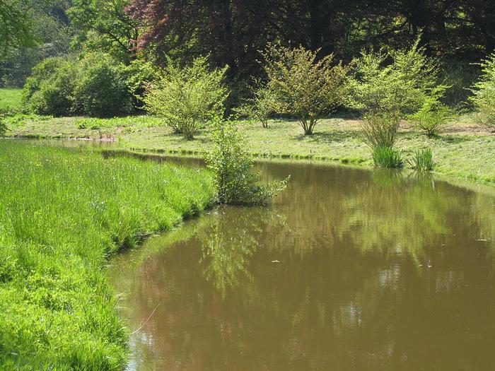 Ботанический сад в Пругонице 52440