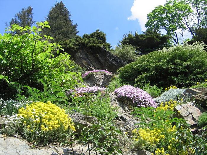 Ботанический сад в Пругонице 42835