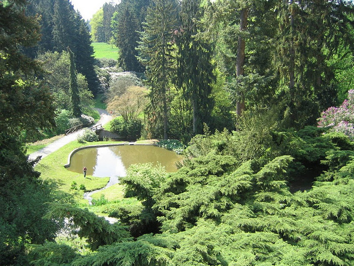 Ботанический сад в Пругонице 64721