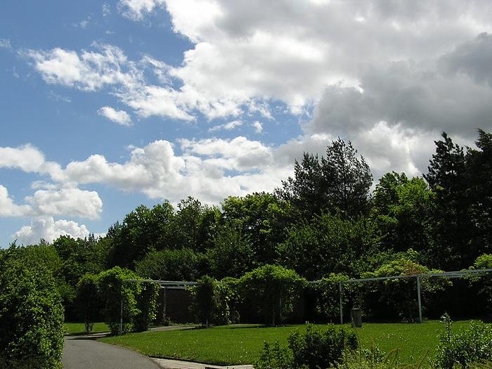 Ботанический сад в Пругонице 29274
