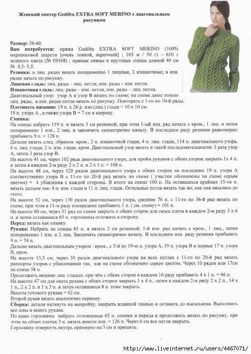 сх1 (495x700, 275Kb)