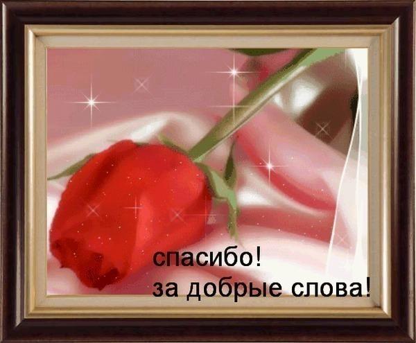 (31) Спасибо за добрые слова!роза как картина (600x495, 73Kb)