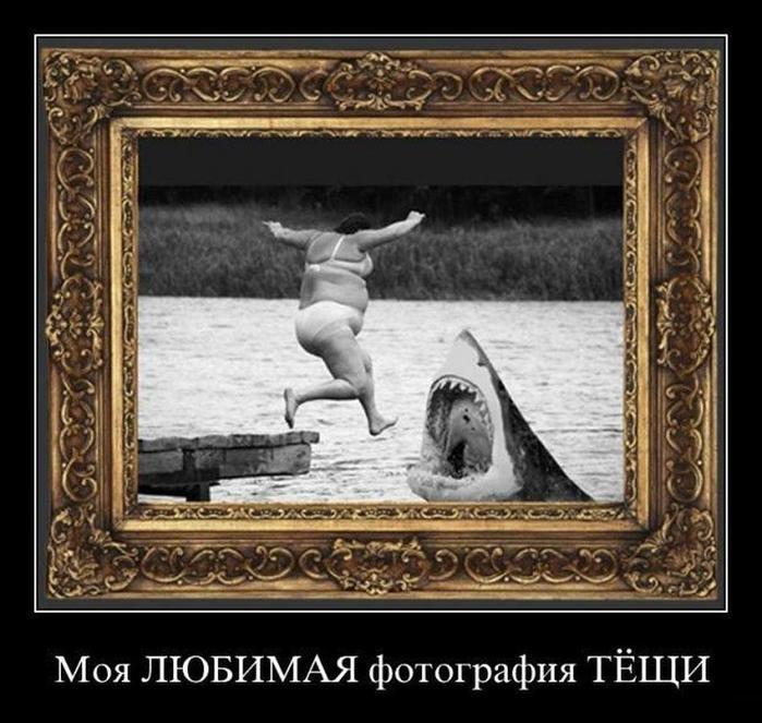 78951457_demotivatory_14_06_11_1080582 (699x663, 74Kb)