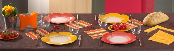 Very-nice-tableware-for-summer-picnic-by-Tifany-Industries-1 (700x208, 46Kb)