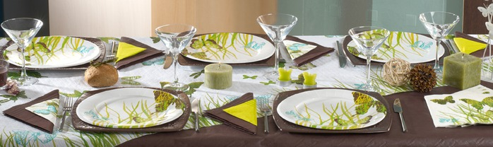 Very-nice-tableware-for-summer-picnic-by-Tifany-Industries-8 (700x208, 59Kb)