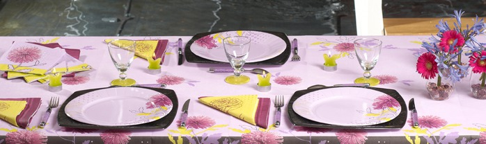 Very-nice-tableware-for-summer-picnic-by-Tifany-Industries-11 (700x208, 54Kb)