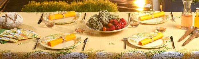 Very-nice-tableware-for-summer-picnic-by-Tifany-Industries-12 (700x208, 60Kb)