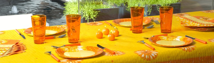 Very-nice-tableware-for-summer-picnic-by-Tifany-Industries-14 (700x208, 56Kb)