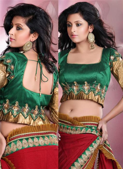 Designer-Sarees-And-Blouses (509x700, 68Kb)