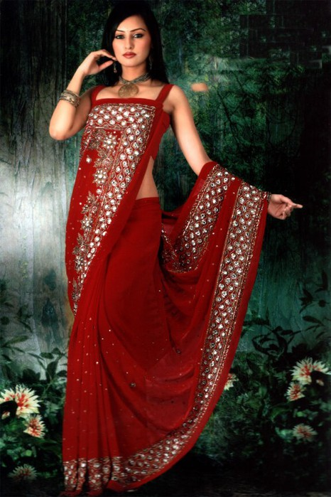 Indian-Red-Saree-Design-a-e1315811710837 (466x700, 97Kb)