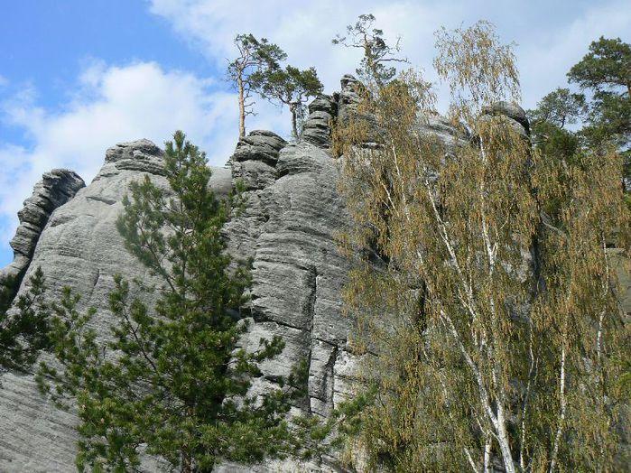 Адершпаско-Теплицкие скалы 38249
