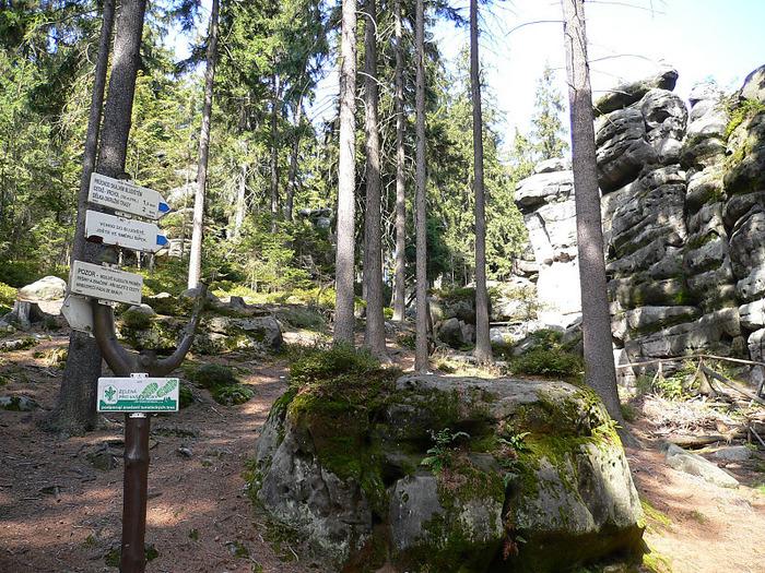 Адершпаско-Теплицкие скалы 10055