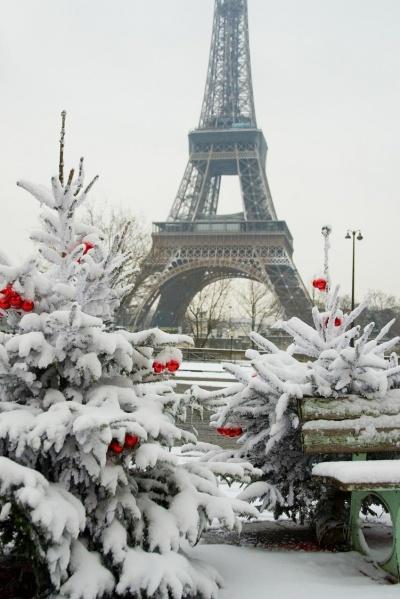 400px-Париж_зимой (400x599, 94Kb)