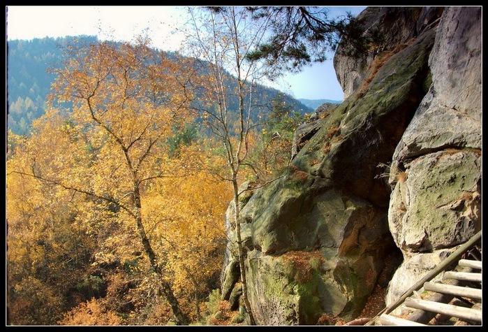 Адершпаско-Теплицкие скалы 81599