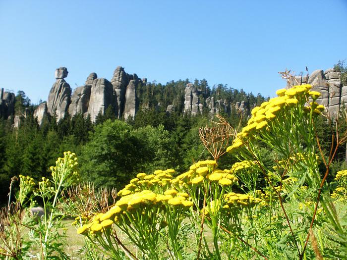 Адершпаско-Теплицкие скалы 13542