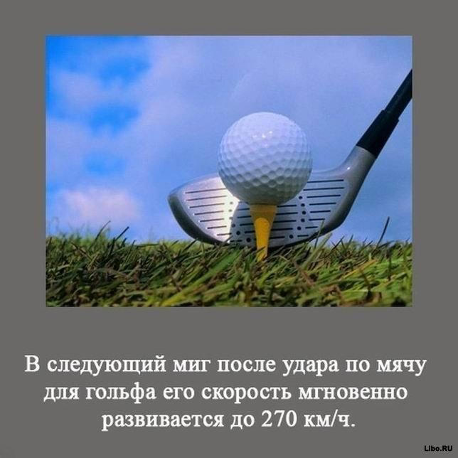 1256617675_1256591700_interesting_fact_13 (644x644, 49Kb)