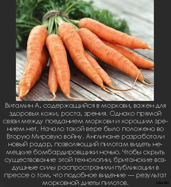 1256617689_1256591814_interesting_fact_15 (552x604, 88Kb)