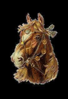 horse001-1 (219x320, 75Kb)