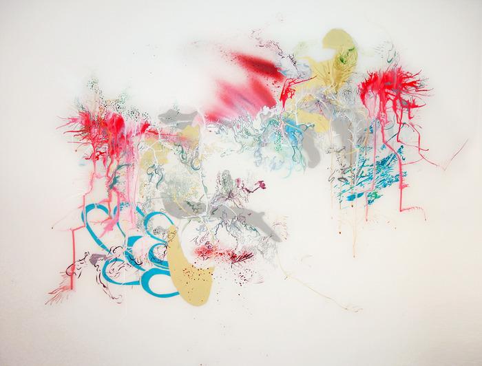 Хаос художницы Сары Сплитер Sarah Spitler 1 (700x532, 114Kb)