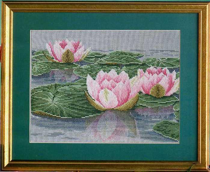 розовые лотосы 1 (700x571,