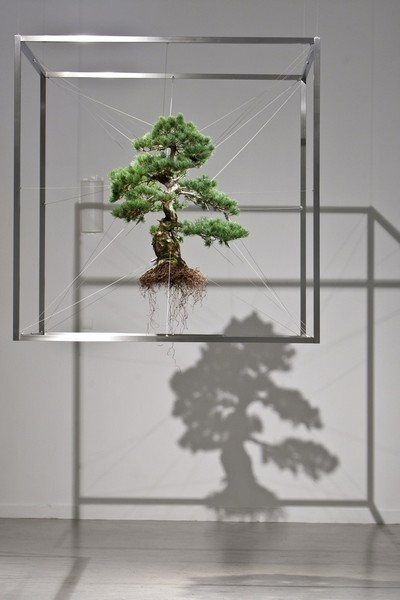 Bonsai-Tree-Sculptures-4 (400x600, 38Kb)