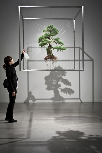 Bonsai-Tree-Sculptures-6 (400x600, 40Kb)