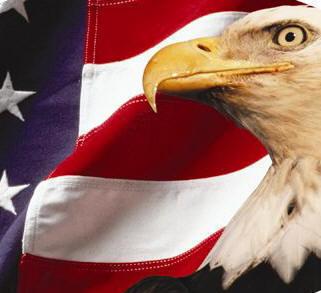 America1 (321x293, 18Kb)