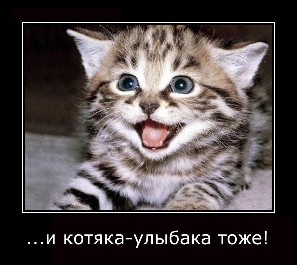 Вульфмор: самый свежий и актуальный юмор в Сети/4413077_wolfmordem21 (600x536, 61Kb)