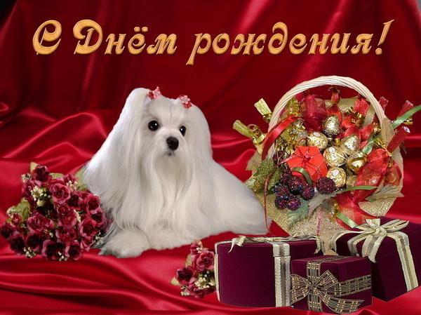 61326114_s_dnyom_rozhdeniya (600x449, 89Kb)