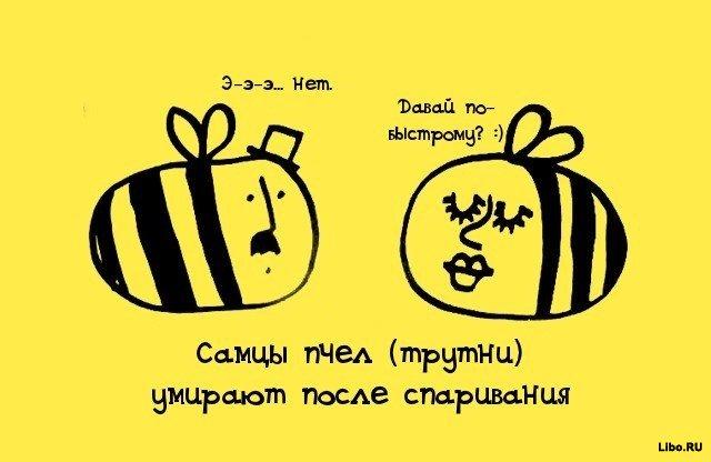 1308561675_009bhha3 (640x416, 40Kb)