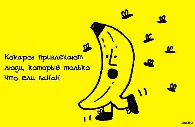 1308561566_009arx42 (640x416, 36Kb)