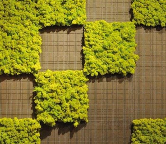 Красивые и экологичные дышащие стены от Benetti Stone Philosophy