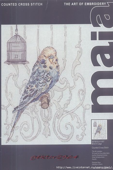 Вышивка. Попугай 4 (467x700