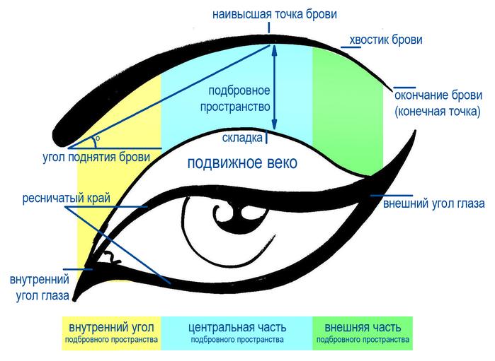 Схема-глаза (700x511, 188Kb)