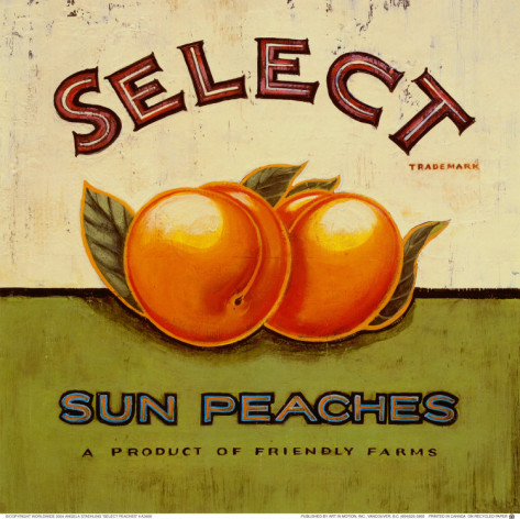 angela-staehling-select-peaches (473x472, 82Kb)
