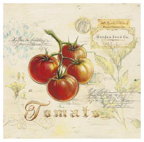 angela-staehling-tuscan-tomato (473x466, 82Kb)