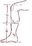 akupres12 (107x155, 7Kb)