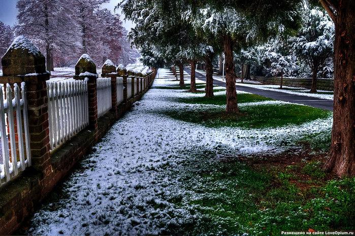 превый снег (700x465, 176Kb)