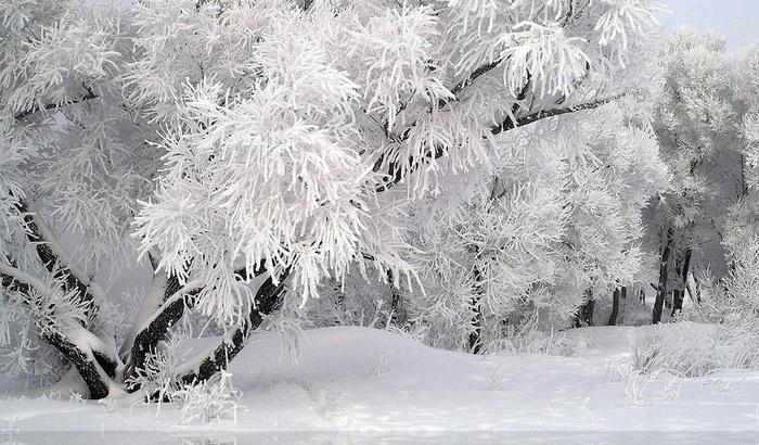 зима (700x410, 170Kb)