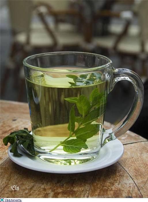 имбирный чай для быстрого похудения отзывы