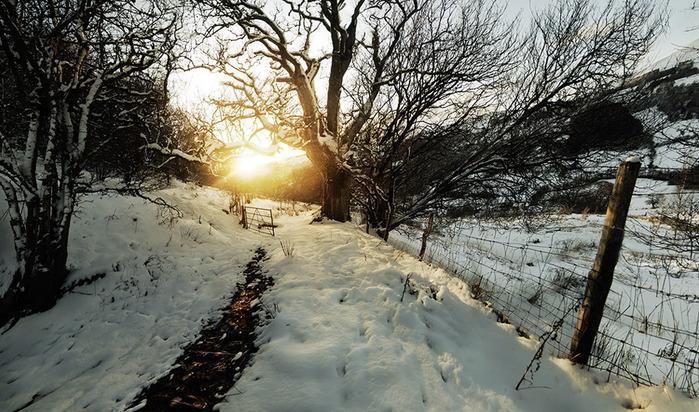 snow (700x412, 155Kb)