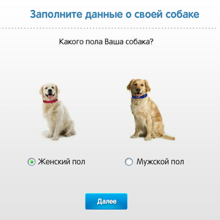 проверить рацион собаки