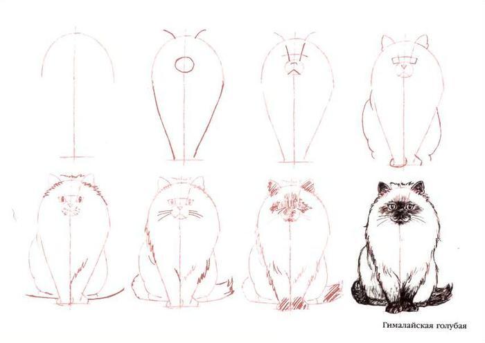 Как нарисовать кота леопольда поэтапно - 4ea2