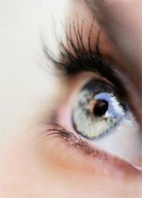 Настойка для восстановления зрения/3140201_0bae5df01b1 (201x280, 15Kb)