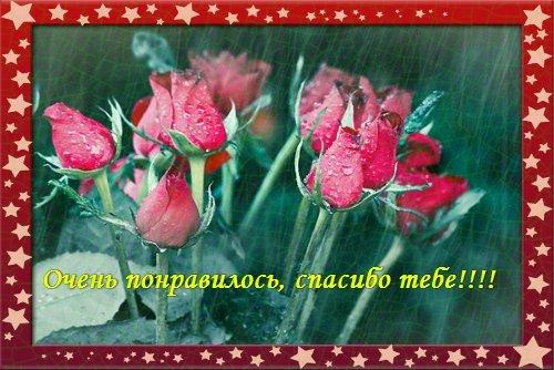 http://img1.liveinternet.ru/images/attach/c/4/80/804/80804255_OCHEN_PONRAVILOS_SPASIBO_TEBE.jpg