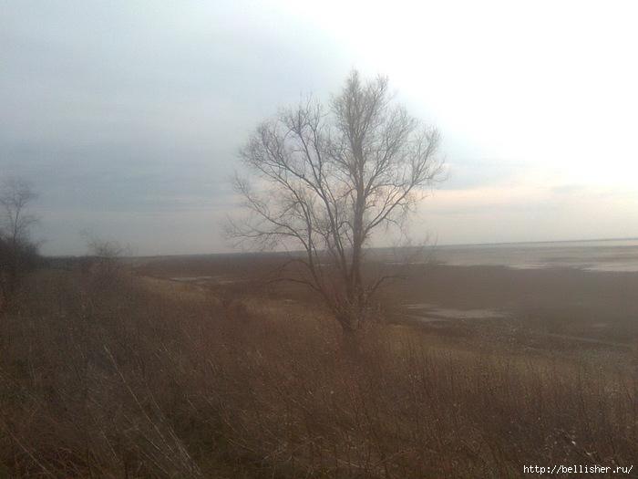 Фото0529 (700x525, 171Kb)