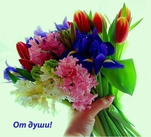 80689847_ot_dushibuket (514x467, 114Kb)