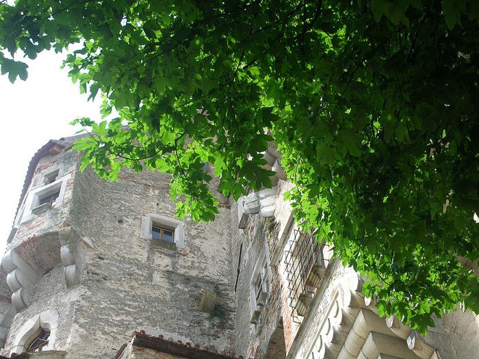 Чехия: Замок Пернштейн 99542